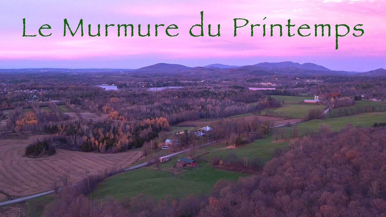 Vidéo par drone et photo aérienne